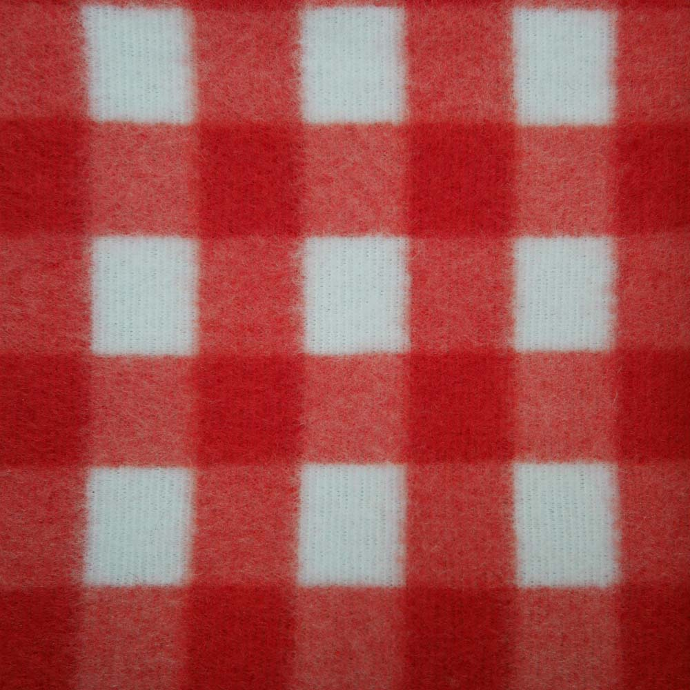 Close up of red and white checked picnic blanket