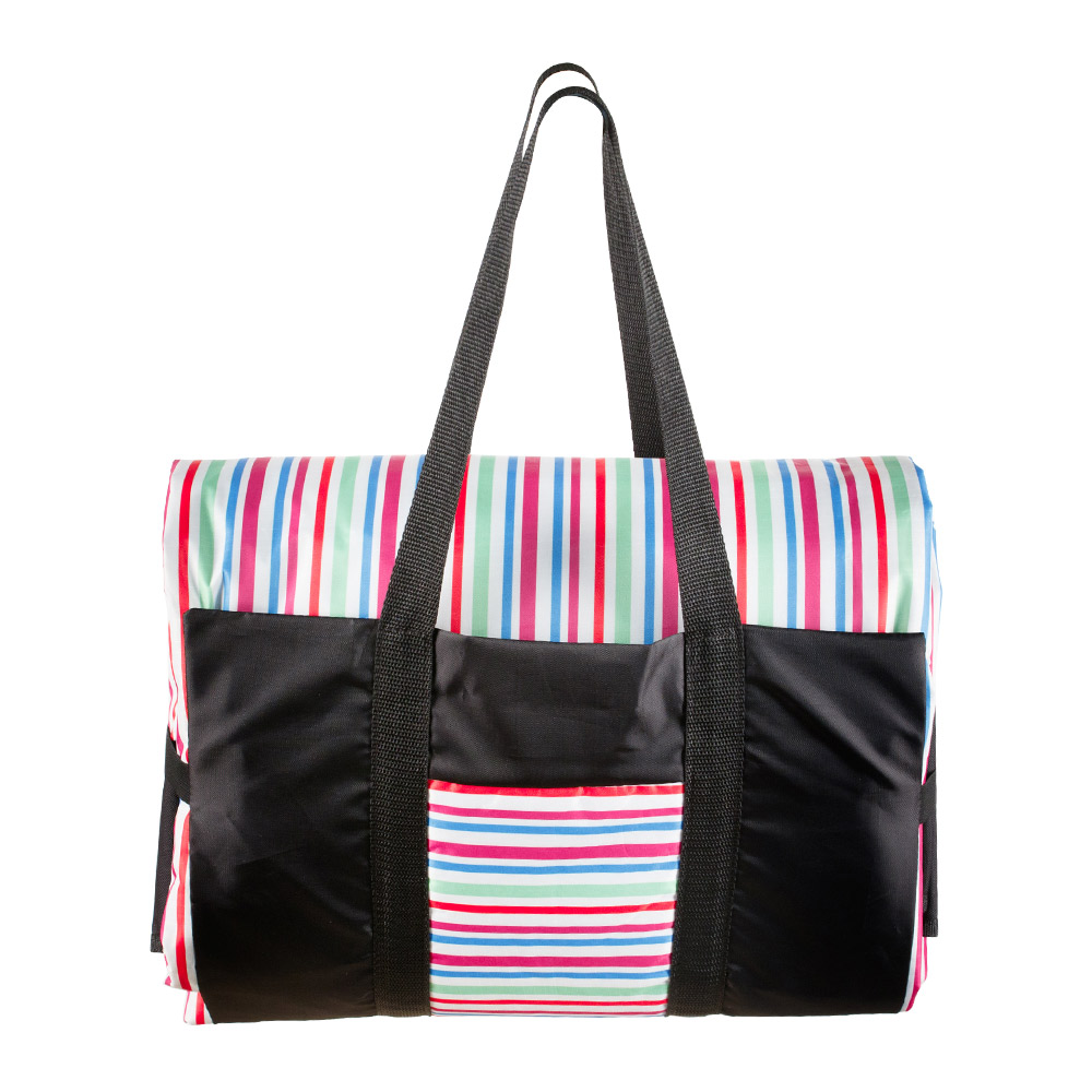 Colorful Stripes Picnic Rug in a Colorful Stripes Bag